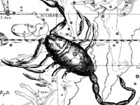 muzhchina-skorpion-vybor-mazoxistki