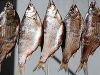 k-chemu-snitsya-solenaya-ryba