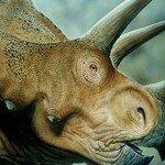 k-chemu-snitsya-dinozavr