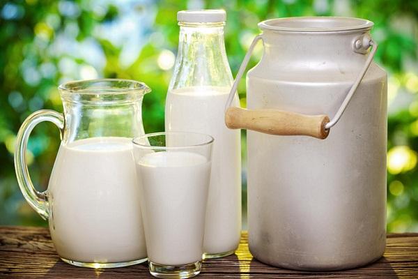 Приснилось молоко правильное толкование по сонникам
