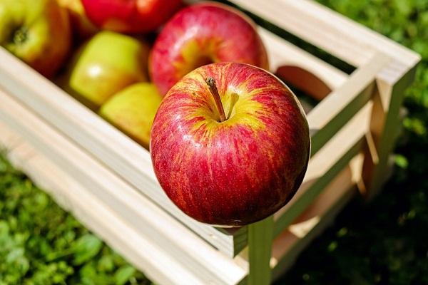 Сонник приснились яблоки