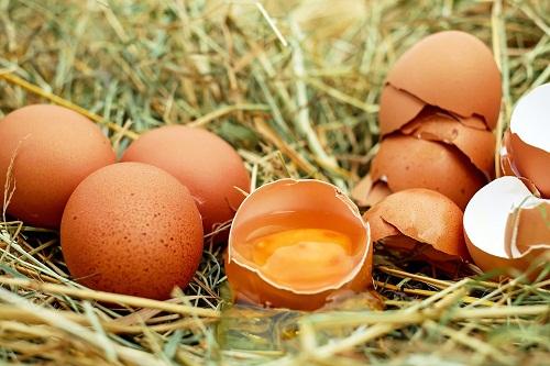 К чему снятся яйца куриные? Сонник - куриные яйца во сне