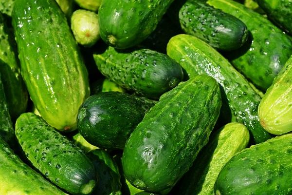 К чему снятся свежие зеленые огурцы
