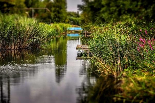К чему снится река мутная чистая вода с течением женщинам и мужчинам сонник