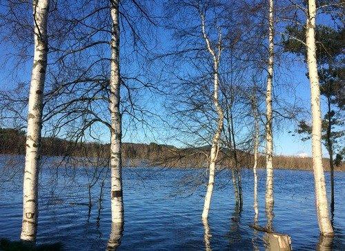 k-chemu-snitsya-potop-navodnenie-2