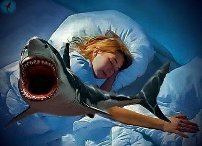 Приснилась акула, к чему: акула – видеть во сне акулу – дурной знак, если только акула не мертвая.