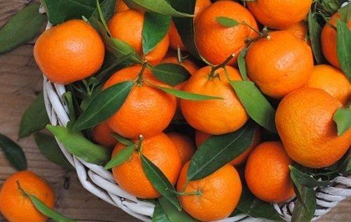 k-chemu-snyatsya-mandariny 1