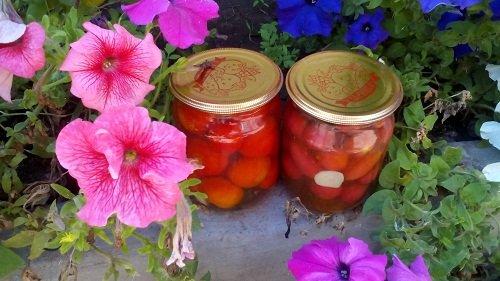 kak-konservirovat-pomidory-cherri-9