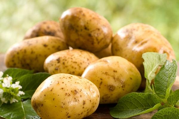 К чему снится картошка, сонник – картошка во сне