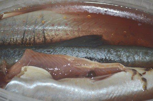 kak-zasolit-rybu-6