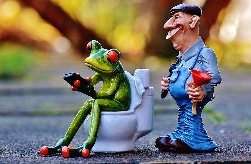 k-chemu-snitsya-xodit-v-tualet-1