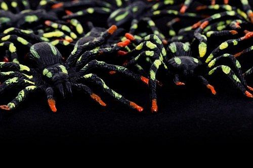 k-chemu-snitsya-mnogo-paukov 1