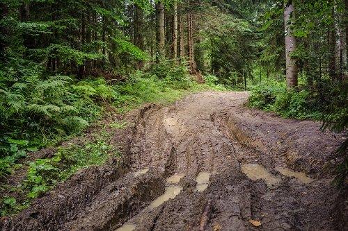 Сонник вываляться в грязи