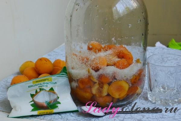 Кисло-сладкий компот из абрикосов на зиму - рецепт пошаговый с фото