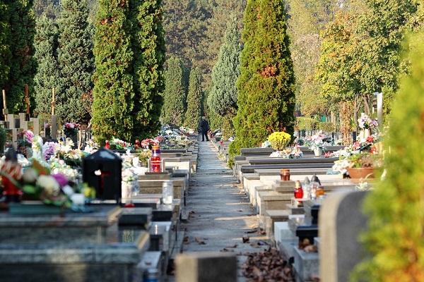 Приснилось ухоженное кладбище