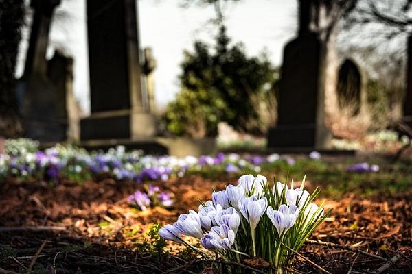 Кладбище во сне что означает