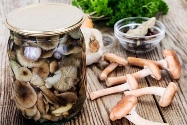Как быстро замариновать грибы опята