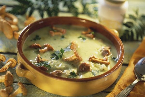 Вкусный суп-пюре из лесных опят