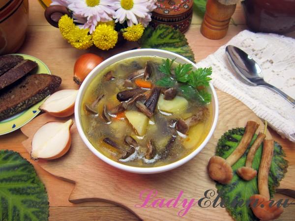 Фото рецепт супа из опят