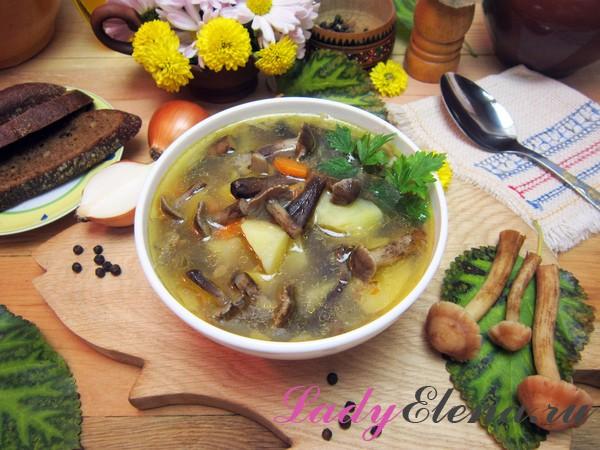 Как варить суп из лесных опят