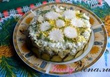Салат из курицы с солеными огурцами фото рецепт